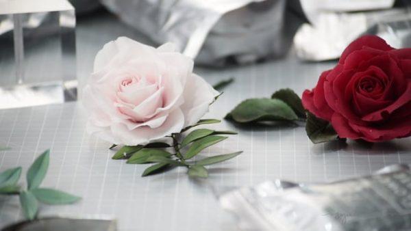 Suzanne Esper Flower Paste Flower 1